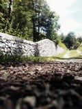 Πέτρινος φράκτης, φυσικός Στοκ Εικόνες