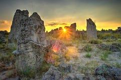 Πέτρινο δάσος φαινομένου φύσης, Βουλγαρία/kamani Pobiti/ Στοκ Φωτογραφίες