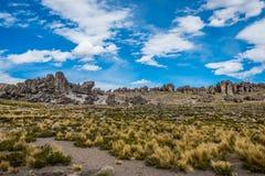 Πέτρινο δάσος Imata στις περουβιανές Άνδεις Arequipa Περού Στοκ εικόνες με δικαίωμα ελεύθερης χρήσης