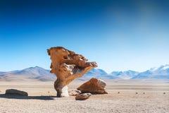 Πέτρινο δέντρο στο οροπέδιο Altiplano, Βολιβία Στοκ φωτογραφία με δικαίωμα ελεύθερης χρήσης