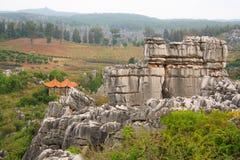 Πέτρινο δασικό εθνικό πάρκο της Lin Shi στην επαρχία Yunnan, Κίνα Στοκ Εικόνες