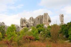 Πέτρινο δασικό εθνικό πάρκο της Lin Shi στην επαρχία Yunnan, Κίνα Στοκ Φωτογραφία