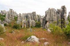 Πέτρινο δασικό εθνικό πάρκο της Lin Shi στην επαρχία Yunnan, Κίνα Στοκ Φωτογραφίες