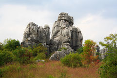 Πέτρινο δασικό εθνικό πάρκο της Lin Shi στην επαρχία Yunnan, Κίνα Στοκ Εικόνα
