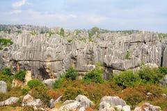 Πέτρινο δασικό εθνικό πάρκο της Lin Shi στην επαρχία Yunnan, Κίνα Στοκ εικόνα με δικαίωμα ελεύθερης χρήσης