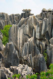 Πέτρινο δασικό εθνικό πάρκο της Lin Shi. Στοκ εικόνα με δικαίωμα ελεύθερης χρήσης