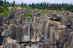 Πέτρινο δασικό εθνικό πάρκο της Lin Shi. Στοκ εικόνες με δικαίωμα ελεύθερης χρήσης