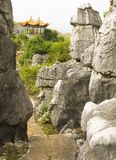 Πέτρινο δασικό εθνικό πάρκο της Lin Shi Στοκ Φωτογραφία