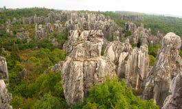 Πέτρινο δασικό εθνικό πάρκο της Lin Shi _ Στοκ φωτογραφίες με δικαίωμα ελεύθερης χρήσης