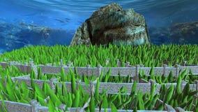 Πέτρινο βουνό που περιβάλλεται από τους τοίχους κάτω από τον ωκεανό απόθεμα βίντεο