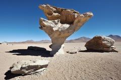 Πέτρινο δέντρο, έρημος Aacama, Βολιβία Στοκ φωτογραφία με δικαίωμα ελεύθερης χρήσης