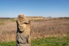 Πέτρινο είδωλο στον εθνικός-ιστορικό και αρχαιολογικό πέτρινο τάφο επιφύλαξης, Ουκρανία Στοκ φωτογραφία με δικαίωμα ελεύθερης χρήσης