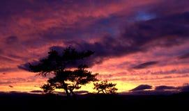 Πέτρινο ηλιοβασίλεμα κρατικών πάρκων βουνών Στοκ φωτογραφία με δικαίωμα ελεύθερης χρήσης