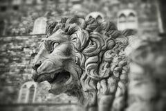 Πέτρινο λιοντάρι - Φλωρεντία Στοκ φωτογραφία με δικαίωμα ελεύθερης χρήσης