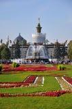 Πέτρινο λουλούδι VVC πηγών Μόσχα στοκ φωτογραφίες με δικαίωμα ελεύθερης χρήσης