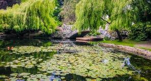 Πέτρινο πάρκο Hill αναγνωριστικών σημάτων γεφυρών στοκ εικόνα με δικαίωμα ελεύθερης χρήσης