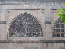 Πέτρινο συρματόπλεγμα παραθύρων στο Ahmedabad Στοκ Εικόνα
