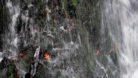 Πέφτοντας απότομα καταρράκτης νερού απόθεμα βίντεο