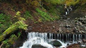 Πέφτοντας απότομα καταρράκτης Ποταμός βουνών στο δάσος στην πτώση απόθεμα βίντεο