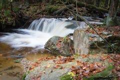 Πέφτοντας απότομα καταρράκτης στον ποταμό Bila Opava, ίχνος φύσης σε Hruby Jesenik, Δημοκρατία της Τσεχίας Στοκ Φωτογραφίες