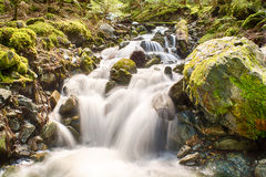 Πέφτοντας απότομα νερό μεταξύ των βράχων Στοκ Φωτογραφία