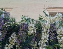 Πέφτοντας απότομα λουλούδια μπροστά από το παλαιότερο κτήριο τούβλου Στοκ εικόνες με δικαίωμα ελεύθερης χρήσης