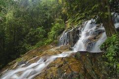 Πέφτοντας απότομα τροπικός καταρράκτης υγρός και mossy βράχος, που περιβάλλεται από το πράσινο τροπικό δάσος Στοκ Εικόνες