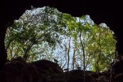Πίθηκοι στην είσοδο σπηλιών Στοκ φωτογραφία με δικαίωμα ελεύθερης χρήσης