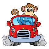 πίθηκος αυτοκινήτων Στοκ Εικόνα