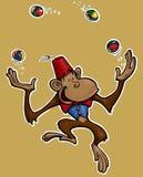 πίθηκος ζογκλέρ Στοκ εικόνες με δικαίωμα ελεύθερης χρήσης