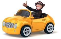 Πίθηκος διασκέδασης Στοκ Φωτογραφίες