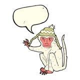 πίθηκος κινούμενων σχεδίων που φορά το καπέλο με τη λεκτική φυσαλίδα Στοκ φωτογραφίες με δικαίωμα ελεύθερης χρήσης