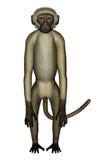 Πίθηκος μπερδεμένος - τρισδιάστατος δώστε ελεύθερη απεικόνιση δικαιώματος