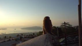 Πίθηκος που προσέχει την όμορφη ανατολή Προσφέρει τις απόψεις των νησιών, του ωκεανού, του ουρανού και του κίτρινου ήλιου φιλμ μικρού μήκους