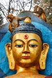 Πίθηκος στο ναό Swayambunath, Κατμαντού, Νεπάλ Στοκ εικόνα με δικαίωμα ελεύθερης χρήσης