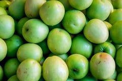 Πίθηκος Apple Στοκ εικόνες με δικαίωμα ελεύθερης χρήσης