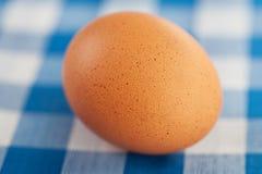 πίνακας αυγών Στοκ εικόνα με δικαίωμα ελεύθερης χρήσης
