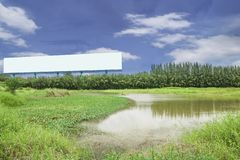 Πίνακας διαφημίσεων στο πράσινο δασικό τοπίο για το κείμενό σας και εικόνα στοκ φωτογραφία με δικαίωμα ελεύθερης χρήσης