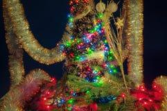 Πίνακας και δέντρο Χριστουγέννων με τους κώνους Στοκ φωτογραφία με δικαίωμα ελεύθερης χρήσης