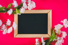 Πίνακας κιμωλίας σε ένα ξύλινο πλαίσιο με ένα κενό κιβώτιο που περιβάλλεται από τα άσπρα λουλούδια σε ένα ρόδινο υπόβαθρο Αντιγρά Στοκ φωτογραφίες με δικαίωμα ελεύθερης χρήσης