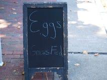 Πίνακας κιμωλίας στο πεζοδρόμιο για τα φρέσκα αυγά Στοκ Εικόνα