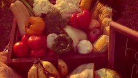 Πίνακας με τα λαχανικά νωπών καρπών απόθεμα βίντεο