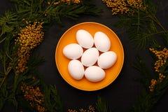 Πίνακας Πάσχας που θέτει με τα άσπρα αυγά με την εκλεκτική εικόνα εστίασης λουλουδιών mimosa Πάσχα ευτυχές Στοκ Φωτογραφίες