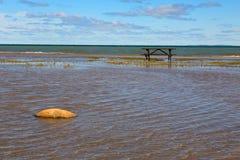 Πίνακας πικ-νίκ σε μια ακτή λιμνών Στοκ εικόνες με δικαίωμα ελεύθερης χρήσης