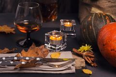 Πίνακας που θέτει με τη διακόσμηση φθινοπώρου για την ημέρα των ευχαριστιών Στοκ Φωτογραφίες