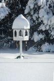 Πίνακας πουλιών στο χιόνι Στοκ Εικόνες