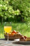 Πίνακας προγευμάτων με muffins κέικ και χυμός από πορτοκάλι στον τομέα Στοκ φωτογραφία με δικαίωμα ελεύθερης χρήσης