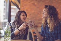 Πίνοντας νερό μεντών Στοκ εικόνα με δικαίωμα ελεύθερης χρήσης