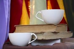 Πίνοντας τσάι Στοκ εικόνα με δικαίωμα ελεύθερης χρήσης