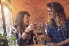 Πίνοντας detox νερό μεντών Στοκ Εικόνες
